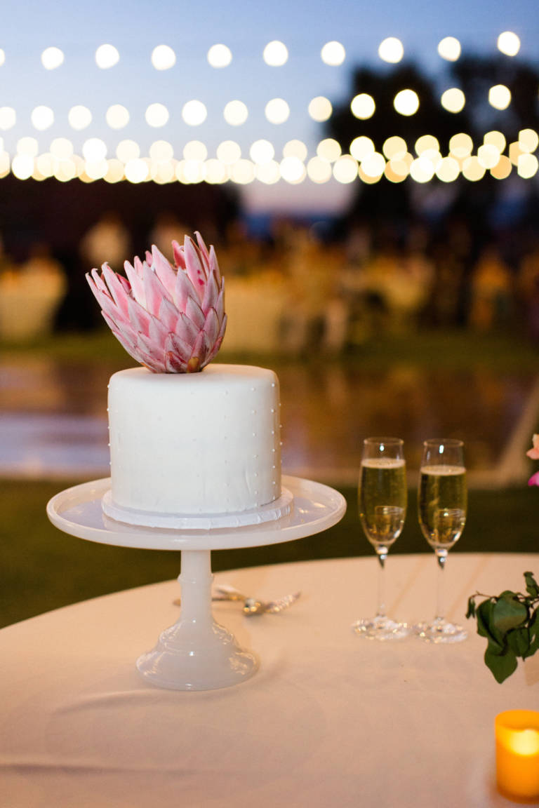 small wedding cake with succulent