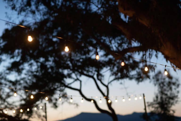 paramour estate evening